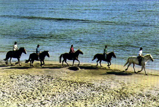 Horse Trekking in Ireland